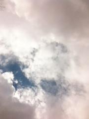 20120323-221213.jpg