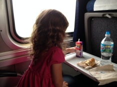 The train to Chicago had very deluxe seats and Alaina had fun looking out of the window and eating snacks.