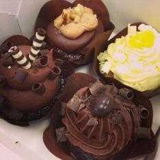 Tiny cupcakes at Hy-Vee