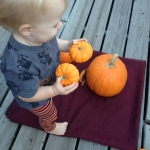 "Also ""helping"" mama take pictures for pumpkin goddess giveaway."