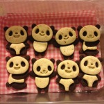 My super talented cookie artist aunt mailed her these adorable panda cookies too.
